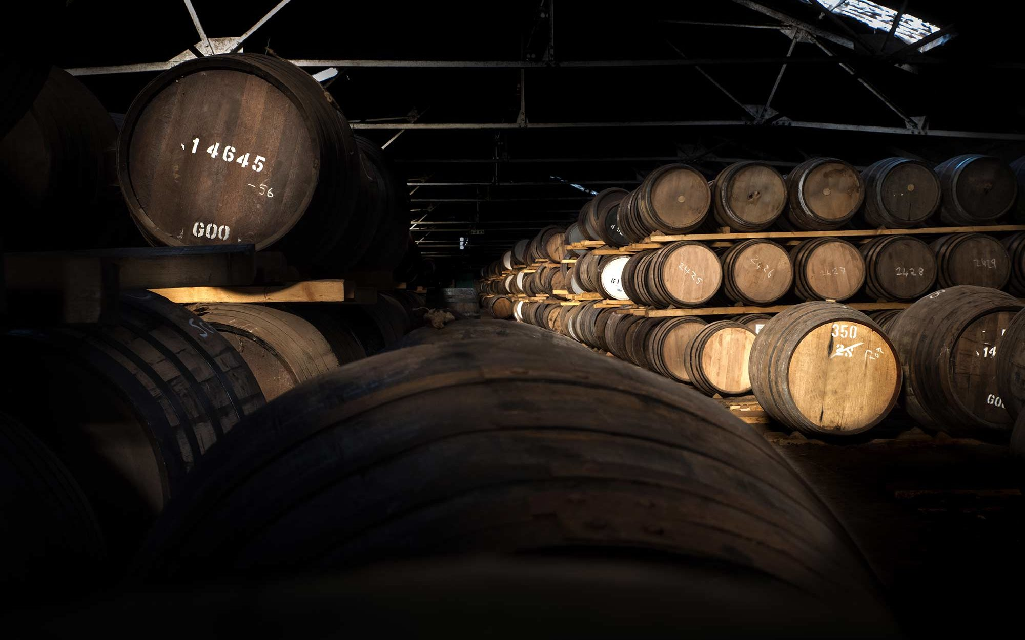 cellar scotland roadtrip sir edwards